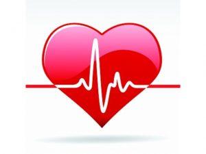 Читаем кардиограмму самостоятельно