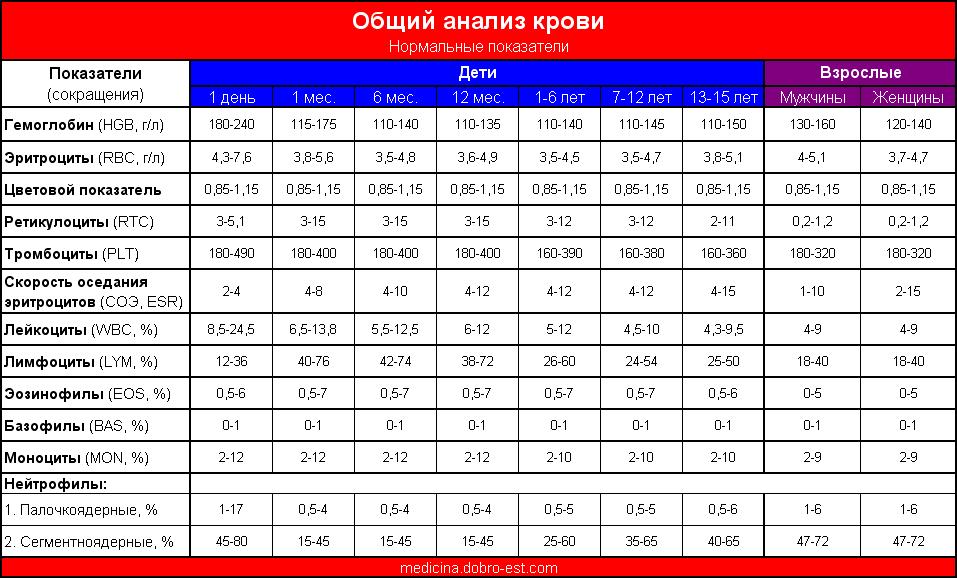 Общий анализ крови – норма (Таблица нормальных показателей крови)