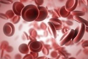 что такое гематокрит в анализе крови