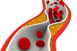 Коэффициент атерогенности повышен причины лечение